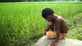 Bangladeshi Funny Child 4 - www.DeshiBoi.com - Bangla Funny Video.mp4