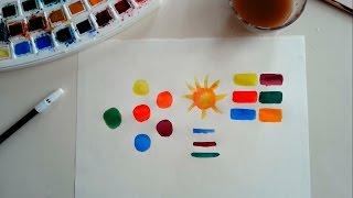 renk bilgisi