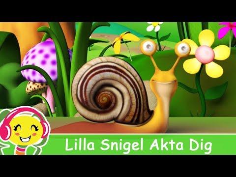Lilla Snigel Akta Dig - Barnsånger på Svenska