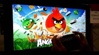 Angry Birds on Android Tv