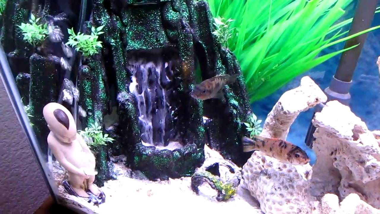 Our Sand Waterfall Aquarium - YouTube