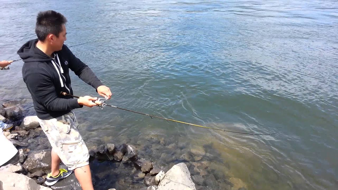 Hmonlg lao fishing shad bonneville youtube for Fish count bonneville
