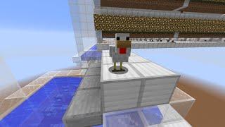 Minecraft: lossless chicken filter