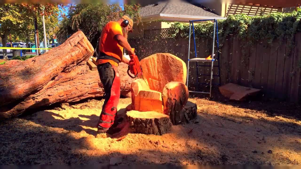 Fremont park chainsaw carving youtube