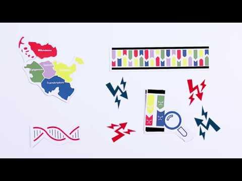 Krankheiten entschlüsseln - wie molekulare Daten die Behandlung chronischer Entzündungen verändern