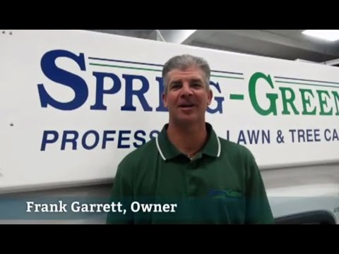 Lawn & Tree Care in Pilot Point, TX | Spring-Green