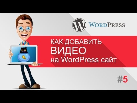 Как вставить видео на WordPress c YouTube, Vimeo (Уроки WordPress для начинающих)