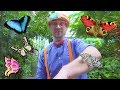 Blippi Explores the Pacific Science Center | Educational Videos for Toddlers