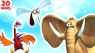 GAZOON | Funny Animals Cartoons Compilation | HooplaKidz TV