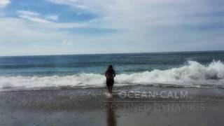 David Grand Oceanic Feeling