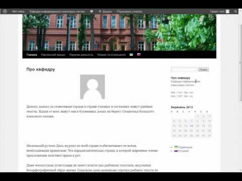 Как сделать сайт wordpress на двух языках - Фризона Брно
