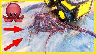 OCTOPUS RESCUED BY BIG TONKA DUMP TRUCK