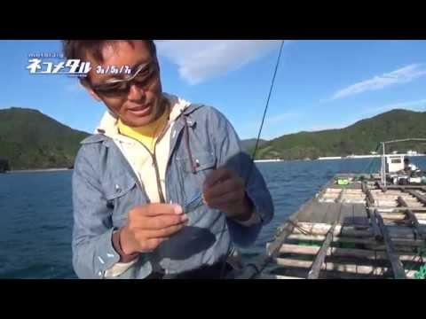 筏de海遊びⅠ(内瀬釣りセンター)