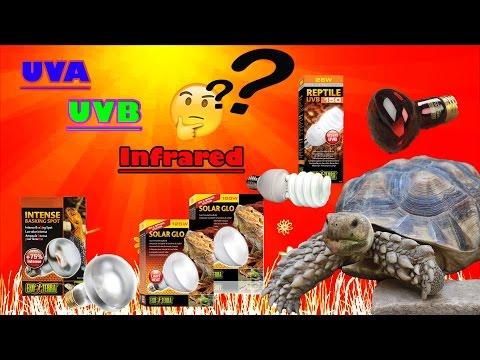 การเลือกใช้และเลือกซื้อหลอด UVA,UVB สำหรับเต่าIndoor