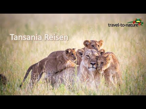 Tansania Reisen mit travel-to-nature