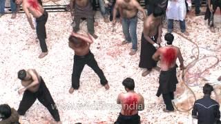 download lagu Qama Zani : Rituals Of Muharram gratis
