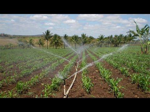 Clique e veja o vídeo Curso Irrigação em Pequenas e Médias Propriedades