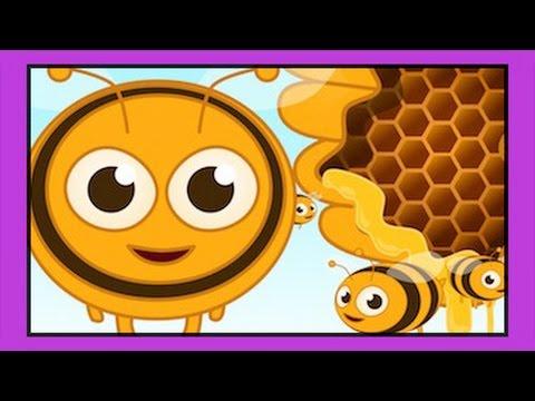 Arı Vız Vız Vız – Çocuk şarkısı – Sevimli Dostlar Okul Öncesi Çocuk Şarkıları