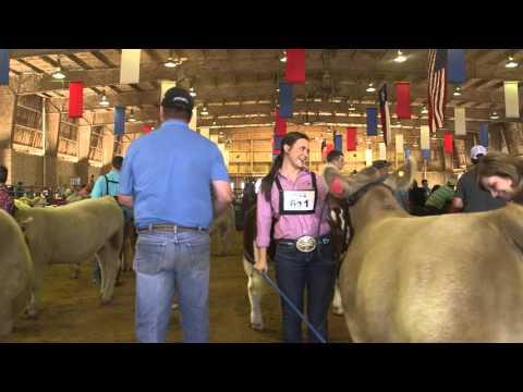 State Fair Youth Livestock Auction Spotlight - Brooke Blum