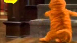 Munni badnaam hui.. Funny.. Cat and dog