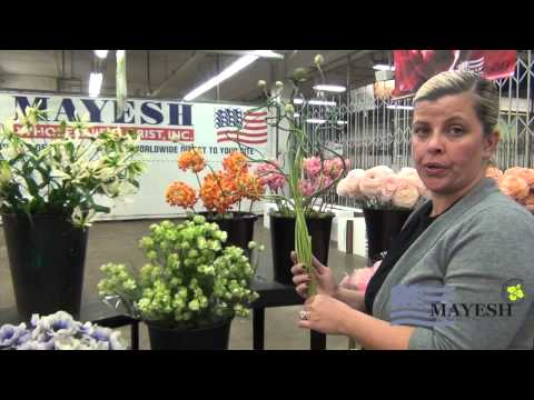 March 2014 Wholesale Flower Product Showcase: Japanese Flowers