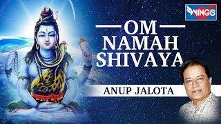 भगवान शिव की इस वंदना को सच्चे मन से सुनने से भगवान शिव सभी मनोकामनाऐं पूर्ण करते हैं -  ॐ नमः शिवाय