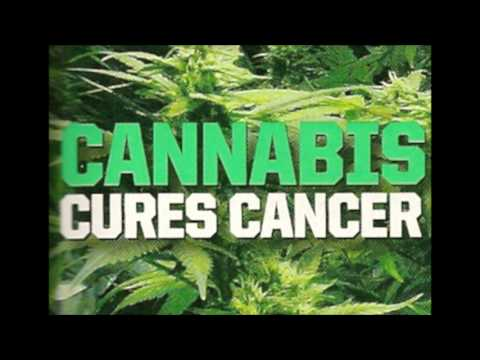 Weed smoker's Reggae / Dub mix - LEGALISE IT CANNABINOIDS ARE A CURE NOT A CRIME