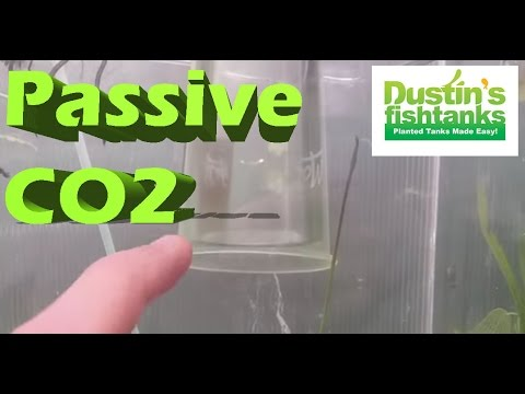 CO2 System in the Greenhouse aquariums, Passive CO2 Diffusion