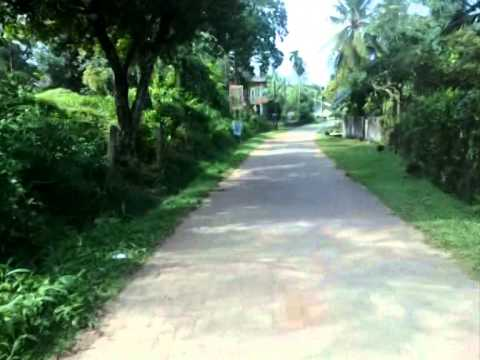 20P Valuable Bare Land for Sale in Colombo.