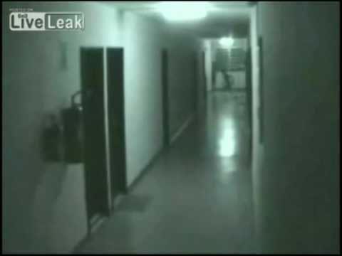 Real Monsters Videos Real Monsters Ghosts Ghouls