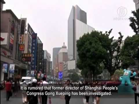 Wang Qishan Visits Shanghai for Tiger or Fly?