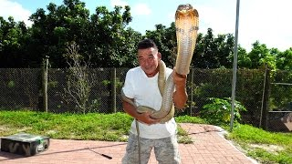 Snake Whisperer Has One Of The Most Dangerous Jobs In The World
