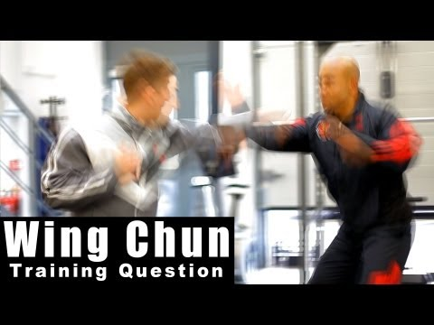 Wing Chun Techniques - how to deal with a jab cross. Q7 Image 1