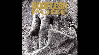 Watch Godflesh Monotremata video
