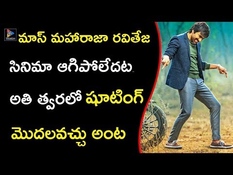 Mass MahaRaja Ravi Teja New Movie Opening | Vi Anand | Tollywood Updates | TFC Films And Film News