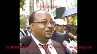 Frustrated Woyane Cadre Exposed the Meles Regime