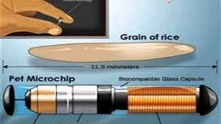 RFID Micro Chip Explained