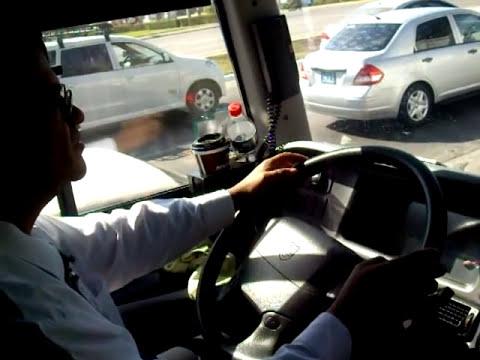 Operador de Transportes y Autobuses del Pacifico ( TAP )