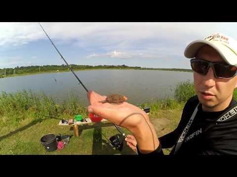 рыболовная ловля на фидер