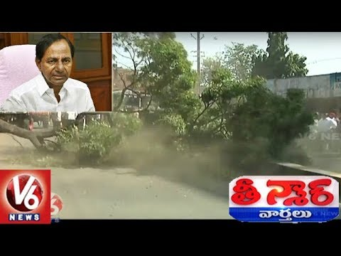 Gajwel Govt Officials Unearth Trees Ahead Of CM KCR's Haritha Haram Tour | Teenmaar News