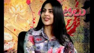 Erra Gulabilu - Chit Chat with Actress Maheshwari & Deva - Erra Gulabilu - 02