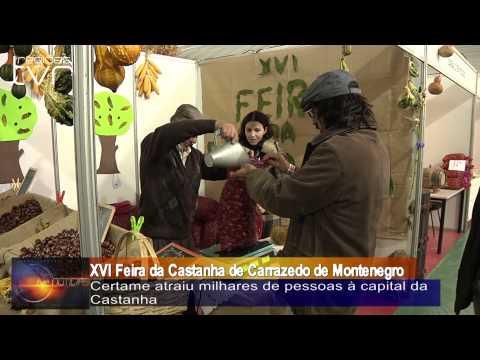 XVI Feira da Castanha de Carrazedo de Montenegro