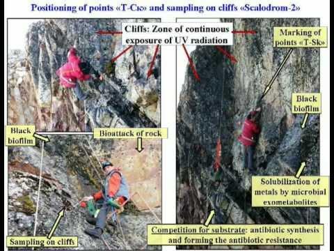Antarctida-Microbial Ecosystems and Bioprospecting.Tashyrev.mpg