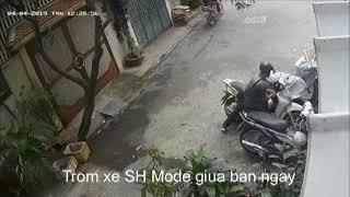 3 đối tượng ăn trộm xe máy Sh Mode giữa ban ngày