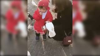Little girl grabbing food from bird. funny girl
