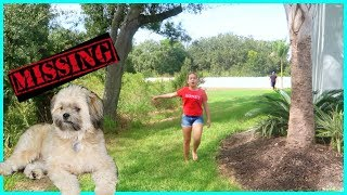 WE LOST OUR DOG | SISTERFOREVERVLOGS #608