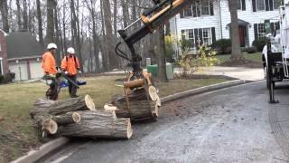 Download Lagu Adirondack Tree Experts - Nate w/ Log loader Gratis STAFABAND