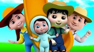 Finger Family Nursery Rhymes | Songs For Children | Kindergarten Cartoons For Kids