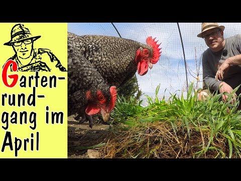 Der Rigotti-Garten im April: Mit Hühnern, Tomaten, Pflanzerde und vielen Tipps.