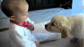 Adorable Baby Meets Puppy